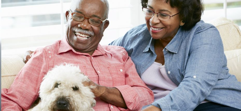 Elderly couple with dog and eye glasses